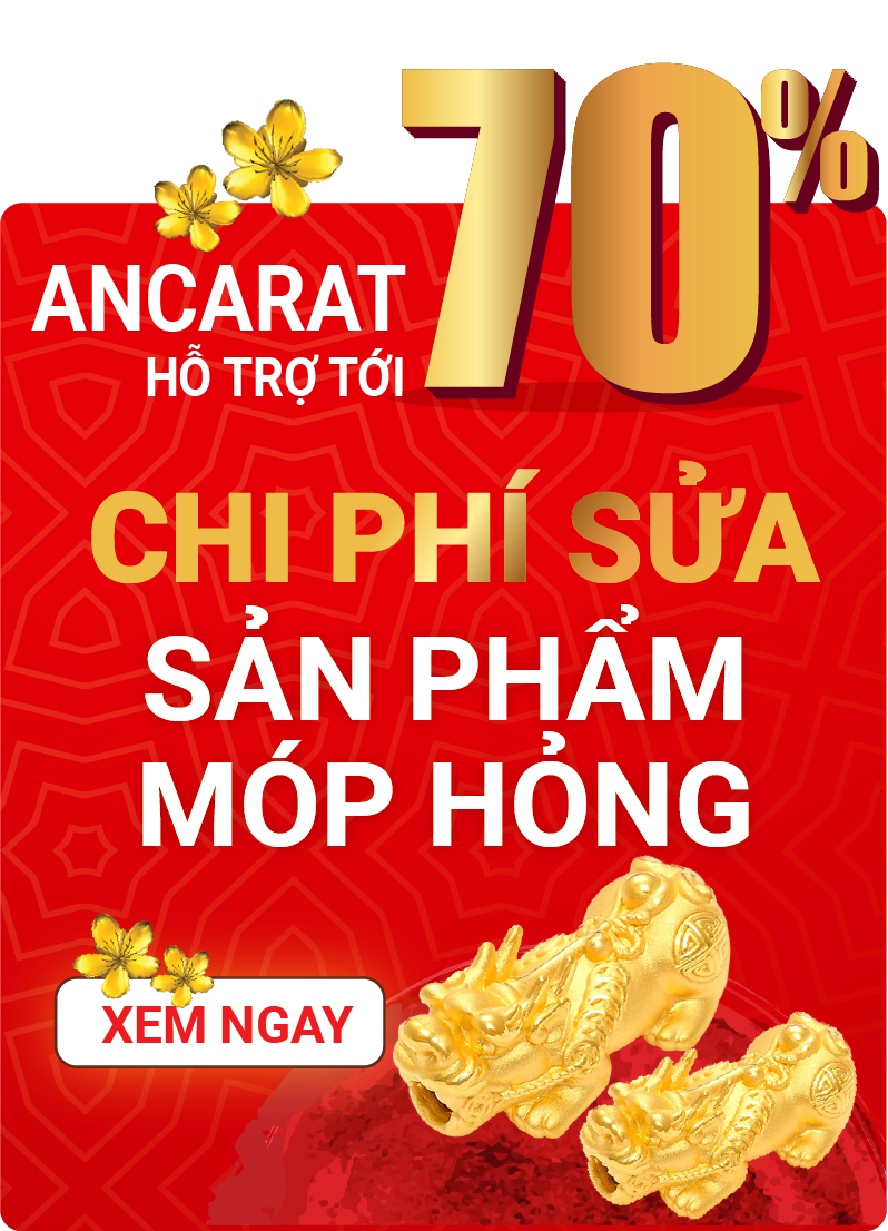 CTY CP ANCARAT VIỆT NAM